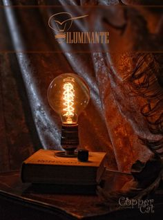 """Retro Desk Lamp """"Iluminante"""" by Copper Cat Art Group - #TableDeskLamps #Book, #Bulb, #Edison, #Metal, #Recycled, #Steampunk, #Vintage (source: idlights.com)"""