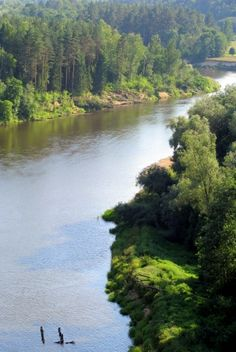 Nature of Latvia. River Gauja.