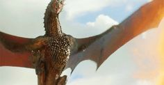 Game of Thrones: Fire and blood – GIFFFERR PLANET