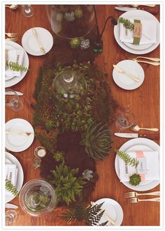 Terrarium centerpieces could be an interesting way to do winter greens instead of traditional floral centerpieces. Very dramatic.
