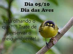 ALEGRIA DE VIVER E AMAR O QUE É BOM!!: DIÁRIO ESPIRITUAL #261 - PENSAMENTO PARA O DIA 05/...