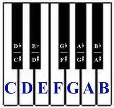 Image detail for -Learn piano online - learn how to play the piano free