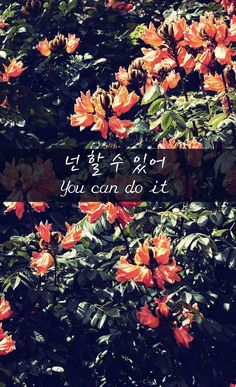 You Can Do It  넌 할 수 있어 Korean Words Learning, Korean Language Learning, Iphone Wallpaper Korean, Korea Quotes, K Quotes, Learn Hangul, Korean Phrases, Korean Lessons, Unique Wallpaper