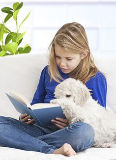 The Advantages of Pets within the Classroom - Your world of knowledge Classroom Pets, Character Trait, Little Puppies, Sit Up, First Baby, Student Work, Immune System, Pet Care, Documentaries