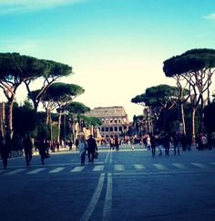 Rome in a sunny day #rome #colosseo #feelinggood