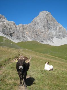 Tinzenhorn Peak close to Tinizong, Canton of Grison