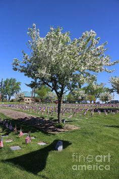memorial day 2014 union county nj