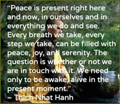 Thank you Thay for your simple yet potent words!