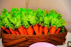 Peter Rabbit Party - Carrot dinnerware