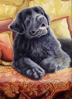 "Here is a wonderful watercolor of a Newfoundland by Michael Steddum. The print is titled ""Mom's Home"" and would make a great addition to your Newfoundland art collection. Print size is 8 ½"" x 11 ½"", p"