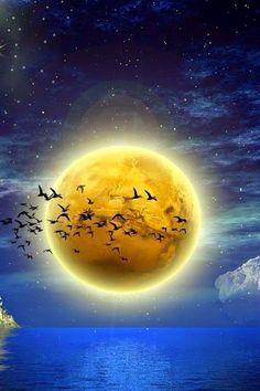 Amazing Beauty ~ Dreamy Nature