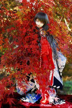 A doll in kimono