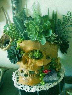 Planted skull halloween surprise you can give away as a funny halloween gift for your friends who love plants, succulents and gardening:) awesome! Suculentas Diy, Cactus Y Suculentas, Air Plants, Indoor Plants, Potted Plants, Plant Pots, Red Succulents, Succulent Planters, Diy Planters