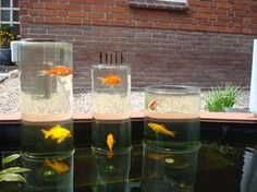 a glass fish tower for in your pond great idea