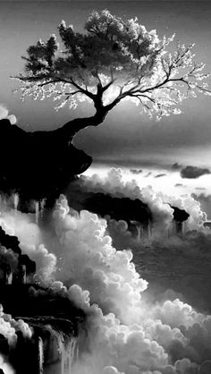 Black and White My favorite photo THIS IS THE VERY TREE THAT THE MASTER TAKES KUNG FU PANDA TO AT THE MOUNTAIN TOP.