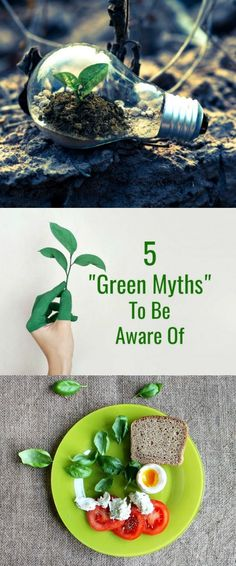 5 Green Myths To Be Aware of ,- None of us want to find out that we've accidentally been harming the planet we're trying our hardest to save, so here are five commonly-believed green living myths that might help you to stay on the right track in the future.  #green   #greenliving   #livinggreen   #ecofriendly   #environmentallyfriendly   #greenmyths