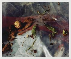 Keith Arnatt 'Pictures from a Rubbish Tip', © Keith Arnatt Estate A Level Photography, Photography Themes, Poverty Photography, Stop Frame Animation, Appropriation Art, Growth And Decay, A Level Art, Fine Art Photo, Natural Forms