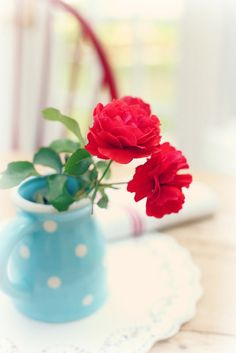 aqua and red