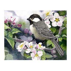 Bird Art Watercolor Print Blackcap Chickadee Men Women by LaBerge on Etsy