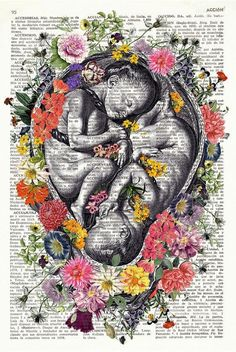 Ideas for vintage art prints beauty Art Vintage, Vintage Art Prints, Medical Illustration, Illustration Art, Human Anatomy Art, Birth Art, Pregnancy Art, Medical Art, Dictionary Art