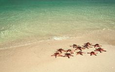 Wisata Pulau belitung, penuh dengan keindahan lautan