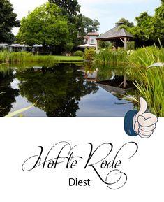 Op zoek naar een mooie feestzaal voor je huwelijksfeest in comboinatie met een professionele huwelijksfotograaf? Prachtige weidse tuin waar een complete foto-shoot kan plaatsvinden.  Ruim terras voor ontvangst en receptie.  Een echte aanrader! Poses