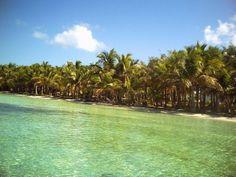 Bimini - Uma ilha paradisíaca nas Bahamas #paraiso #ilhas #praias