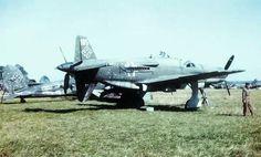 Do-335