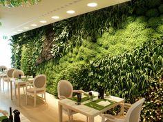 Jardins Verticais | Jardim das Ideias STIHL - Dicas de jardinagem e paisagismo
