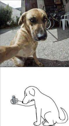 Selfie da cani