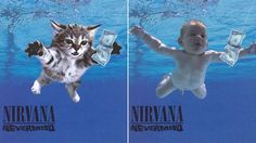 Kittens Album Covers
