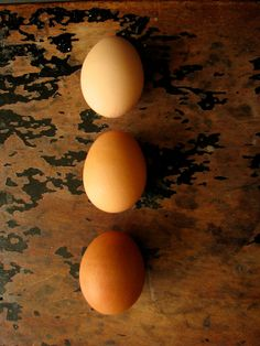 Ombre Eggs - Still life photography - Brown eggs, food photography, farm fresh, fine art photograph