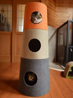 Lovely new cat tower for Maru and Hana (by sisinmaru)