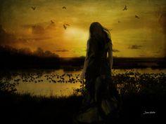 Sunset - Jean Hutter - Digital Views