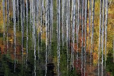 ~~Reflection like Painting~~