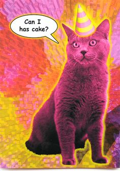 Funny cat birthday card is crafted in Popliments' copyrighted psychedelic pop art style. Inspired by a cute animal photo, this greeting card has a color palette of pink, yellow and orange.   Front: Can I has cake? Inside: I like you. I like cake. Now that's a Birthday! Cat Birthday, Birthday Wishes, Birthday Cards, Happy Birthday, Cute Animal Photos, Funny Greeting Cards, Psychedelic, Funny Cats, Pop Art