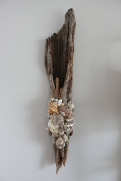 Custom Driftwood Wall Decor with Shells and Sea Life $385 Visit our Etsy Shop SimplyShellsNC to purchase