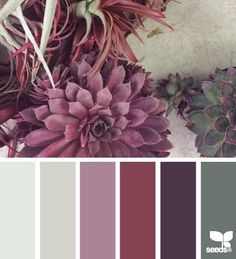 color option- succulent color scheme