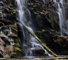 Water falling.  #waterfall #hopkinsfalls #hopkinsriver #farm #warrnambool #victoria #australia #greatoceanroad #bush #water #fall #stick #rocks by ash.pb