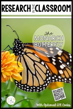 Students will enjoy this research project to learn about the Monarch Butterfly. Kindergarten, first grade, second grade, and third grade. $