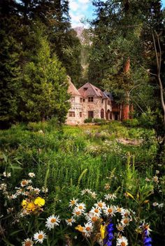 Forest House, Lake Tahoe, California photo via kaye. Make it a cabin, but that is a beautiful forest! Beautiful Homes, Beautiful Places, Forest House, Forest Cottage, Cottage In The Woods, Forest Garden, Lake Cottage, Garden Paths, Exterior