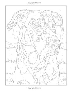 Creative Haven Dogs Color by Number Coloring Book (Adult Coloring) Diego Jourdan Pereira Pattern Coloring Pages, Coloring Pages To Print, Coloring Book Pages, Dog Coloring Page, Free Coloring, Pintura Vector, Animal Quilts, Dog Quilts, Color By Number Printable