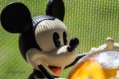 Mickey...