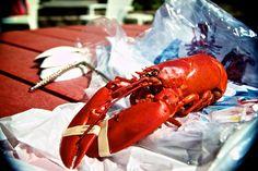 Live Maine Lobster, Lobster Pound, Baileys, East Coast, New England, Pine, Restaurants, Sea, Fresh