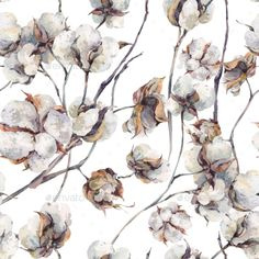 Watercolor Seamless Pattern With Twigs And Cotton - Download…