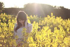rapeseed & sunshine