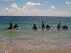 Going for a swim at Honeymoon Beach, St Lucia, Atlantic Shores Riding Stables, http://www.fodors.com/world/caribbean/st-lucia/activity_2508581.html