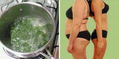 Hoy en día existe miles de recetas que se pueden utilizar para poder bajar de peso sin tantos proble...