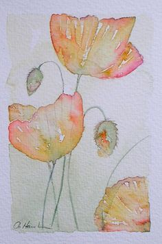 WELSH POPPIES original small watercolour painting artist Amanda Hawkins 9 x 14cm decorative art floral artwork cottage garden flowers