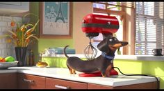 Gotta see this!! The Secret Life of Pets - Trailer Official
